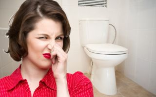 Причины и способы устранения запаха канализации в туалете