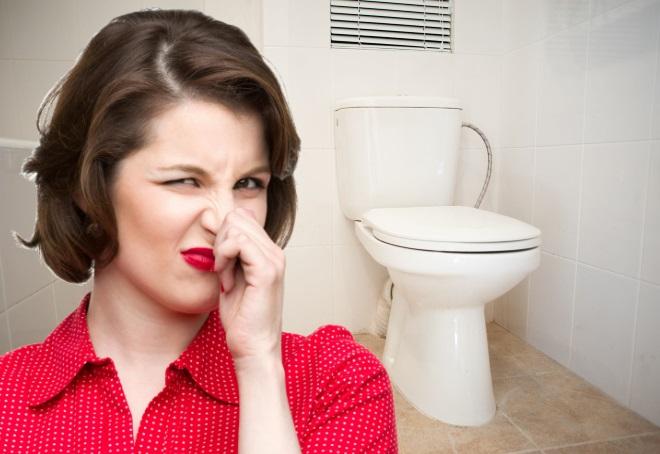 запах канализации в туалете какие причины и как устранить